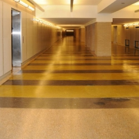 Stained polished concrete on commercial walkway