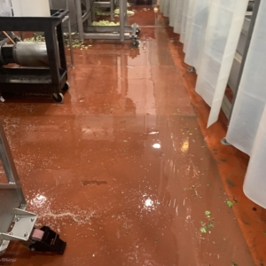 urethane flooring over food processing plant floors